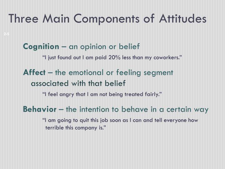 Three Main Components of Attitudes