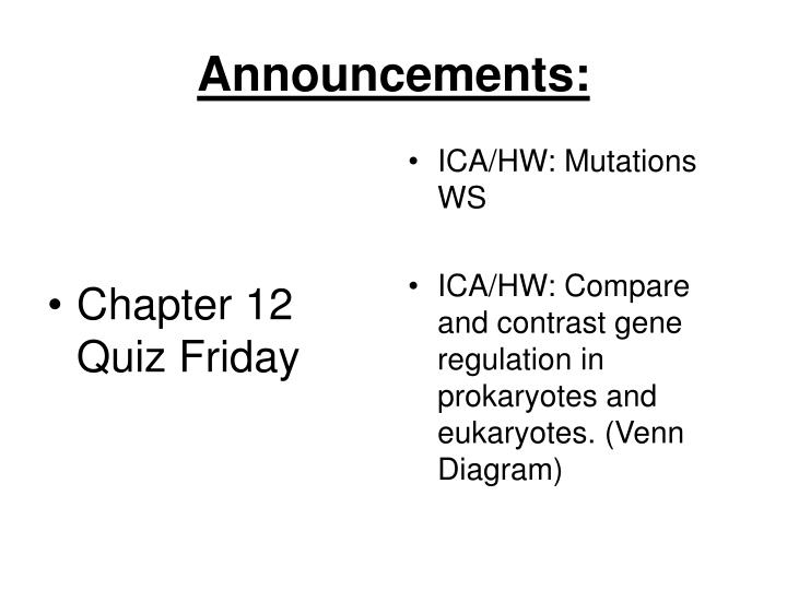 Chapter 12 Quiz Friday