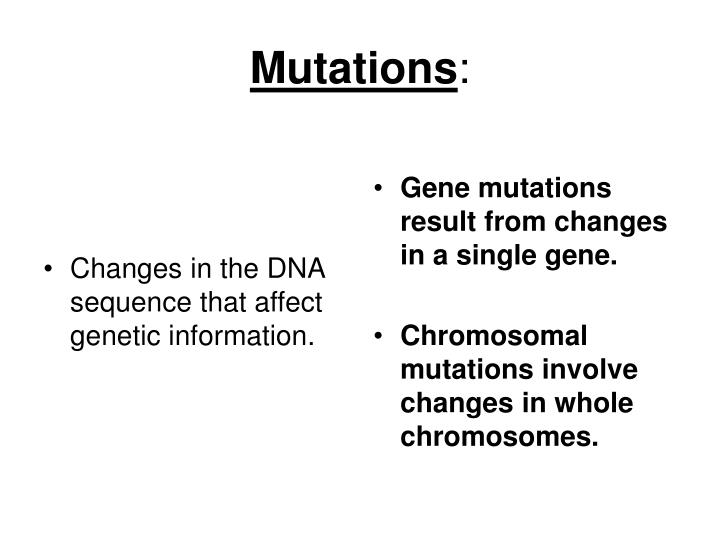 Changes in the DNA sequence that affect genetic information.