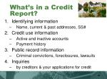 what s in a credit report