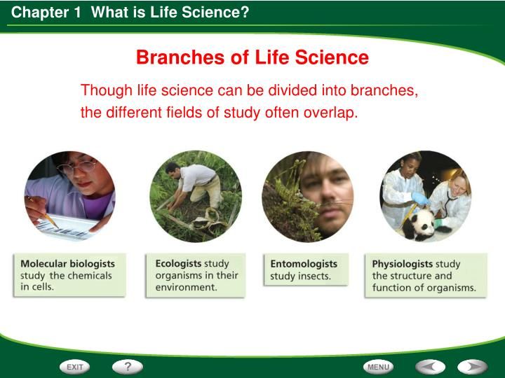 Branches of Life Science