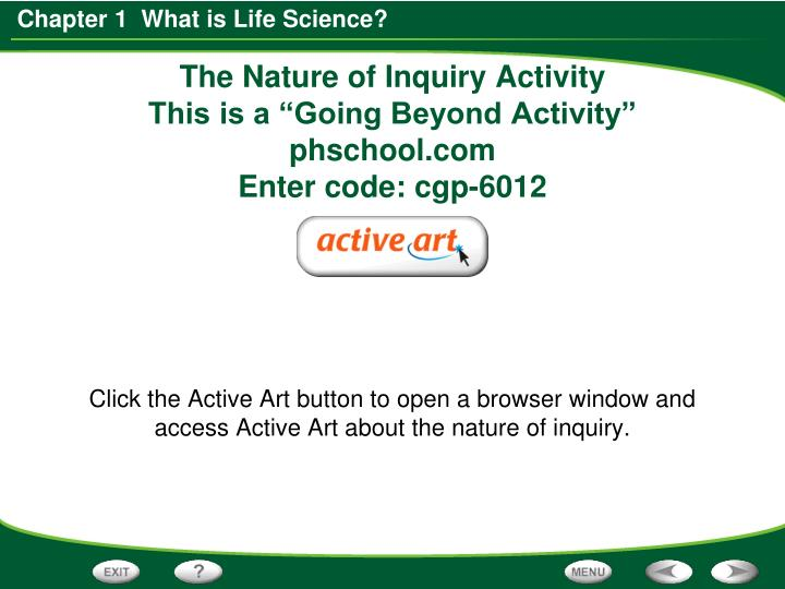 The Nature of Inquiry Activity