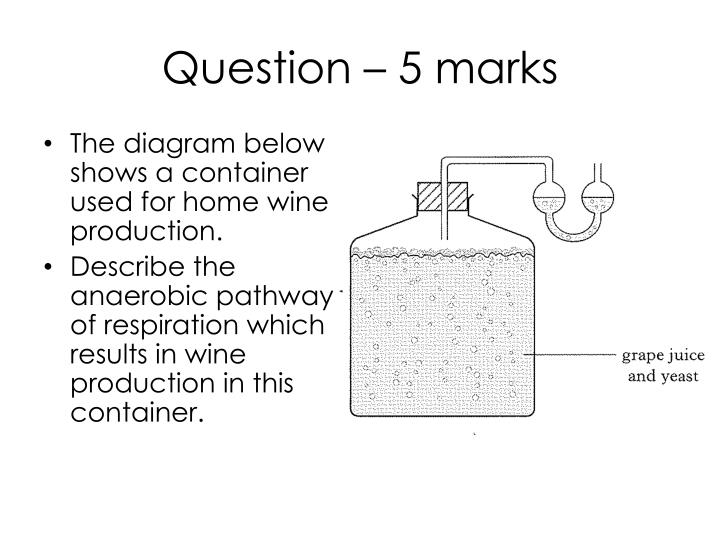 Question – 5 marks