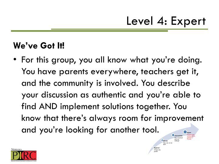 Level 4: Expert