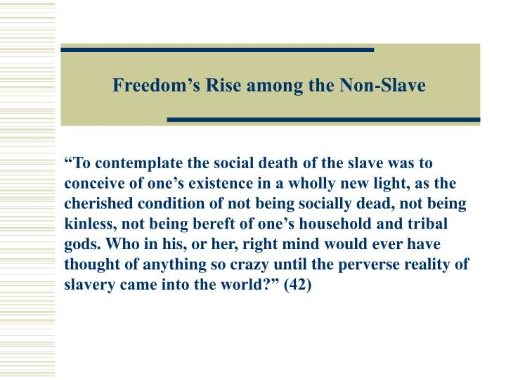 Freedom's Rise among the Non-Slave