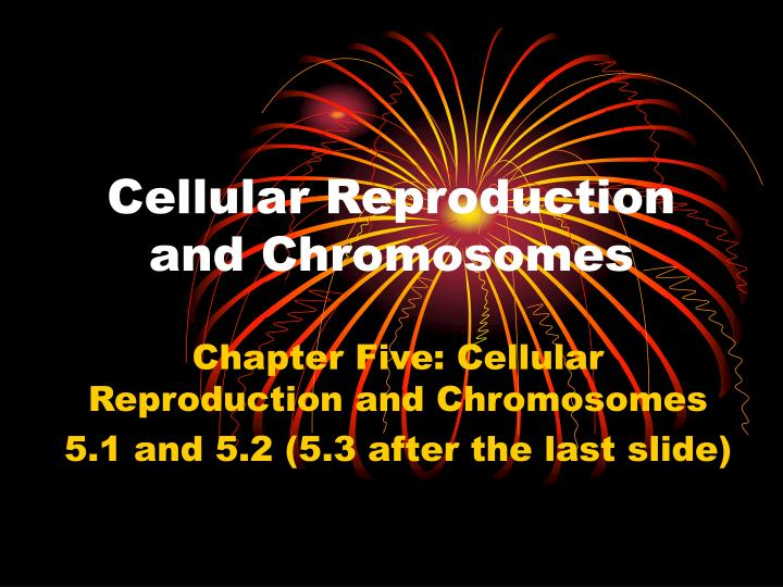 cellular reproduction and chromosomes n.