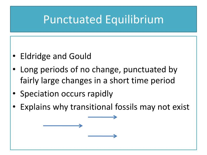 "phyletic gradualism and punctuated Since eldredge and gould (1972) first wrote about ""punctuated equilibrium"" as a   another favors the traditional alternative of phyletic gradualism or at least."
