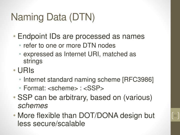 Naming Data (DTN)