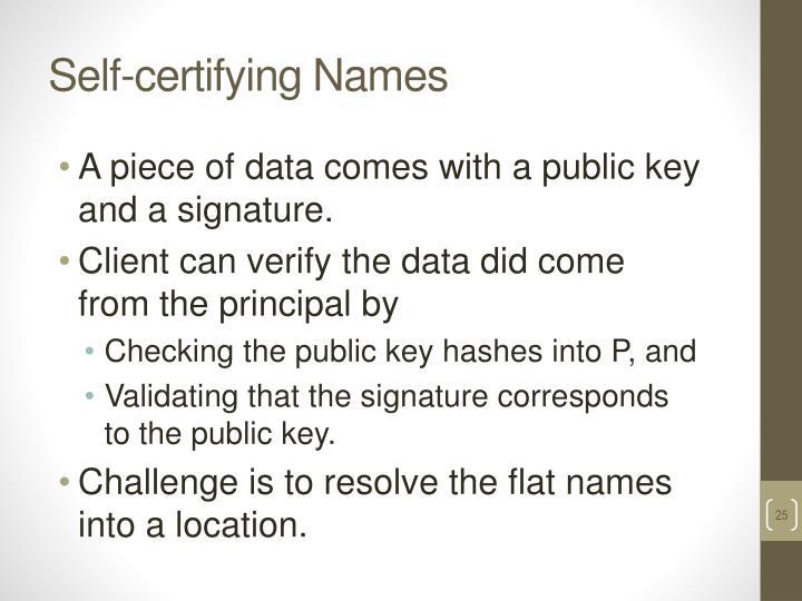 Self-certifying Names