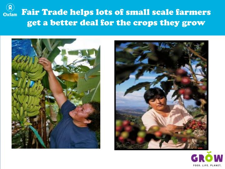 Fair Trade helps lots of small scale farmers get a better deal for the crops they grow