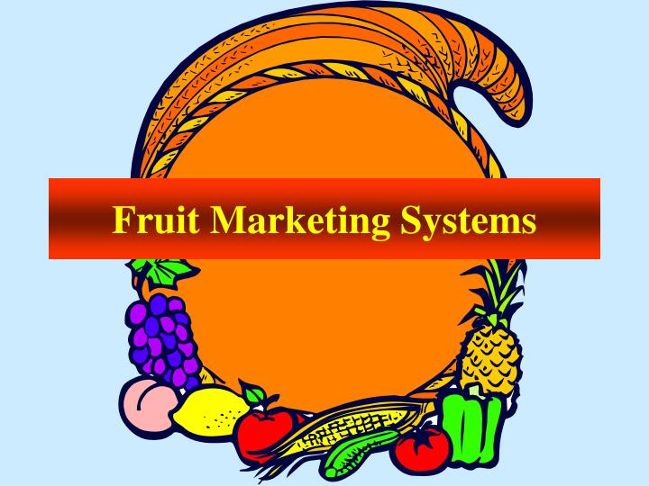 Fruit Marketing Systems