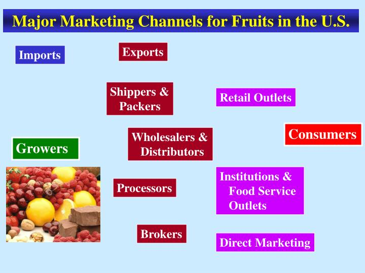 Major Marketing Channels for Fruits in the U.S.