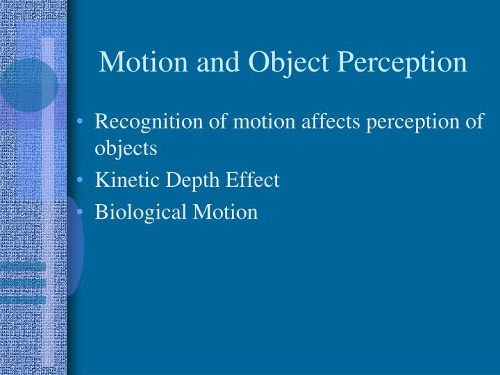 Motion and Object Perception