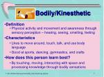 bodily kinesthetic