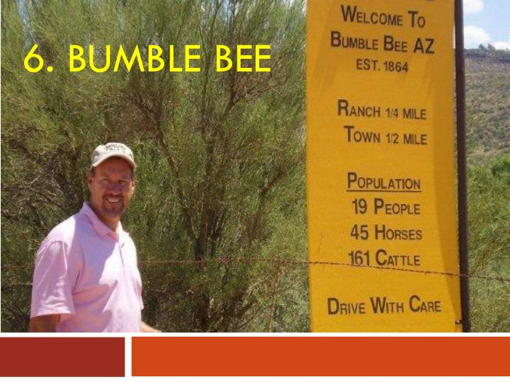 6. Bumble Bee