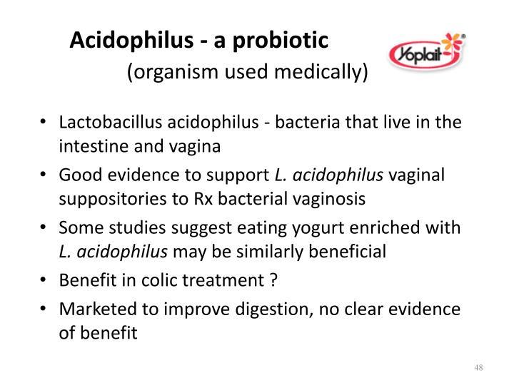 Acidophilus - a