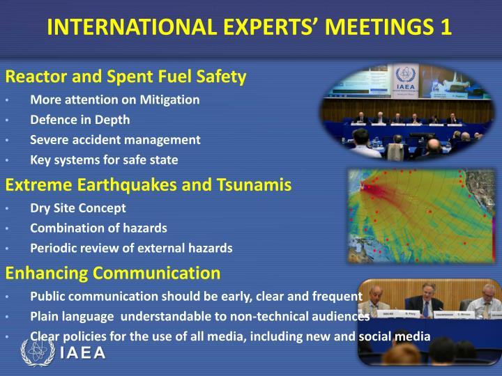INTERNATIONAL EXPERTS' MEETINGS 1