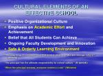 cultural elements of an effective school