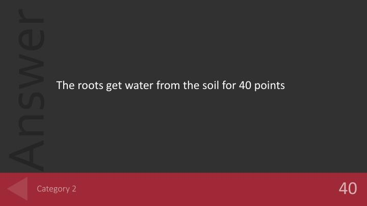 The roots get water from the soil for 40 points