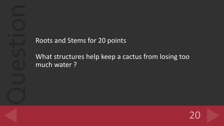 Roots and Stems for 20 points