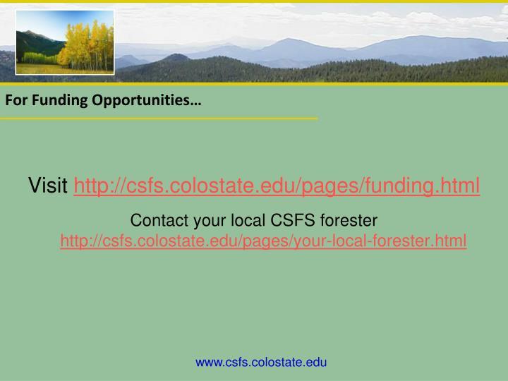 For funding opportunities