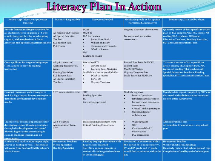 Literacy Plan In Action