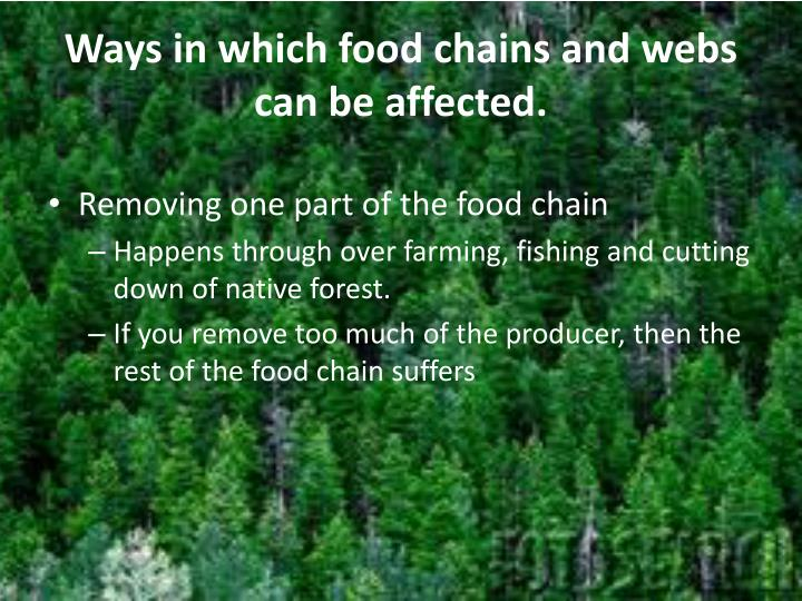 Ways in which food chains and webs can be affected.