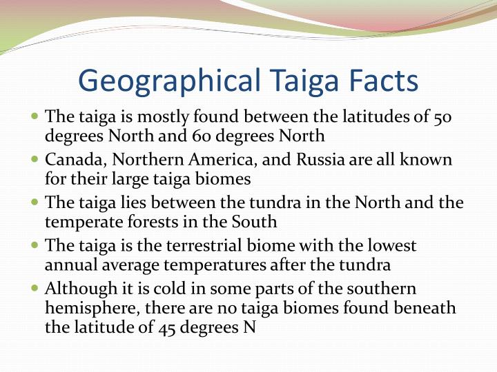 taiga fun facts essay example Get information, facts,  chapter 7 wetlands  for example, the nature conservancy oversees many wetland restoration projects,.