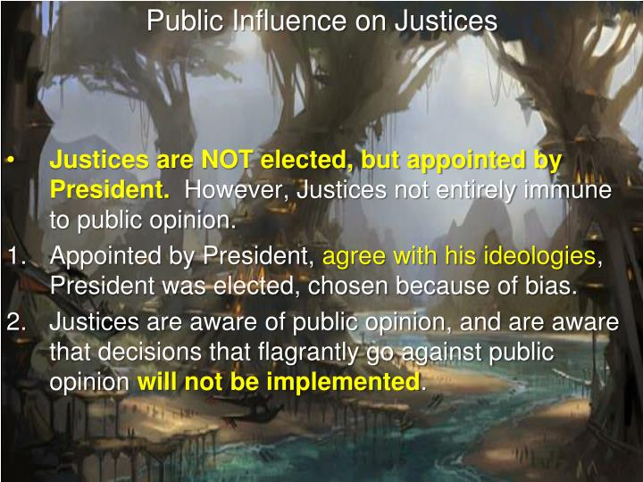 Public Influence on Justices