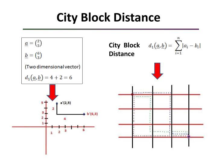 City Block Distance