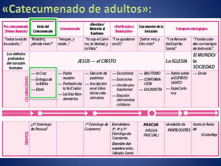 «Catecumenado de adultos»: