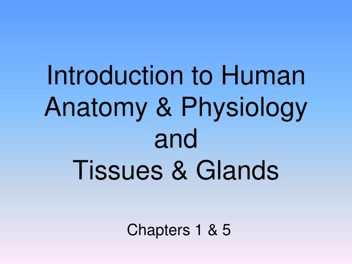 PPT - Introduction to Human Anatomy & Physiology and Tissues ...