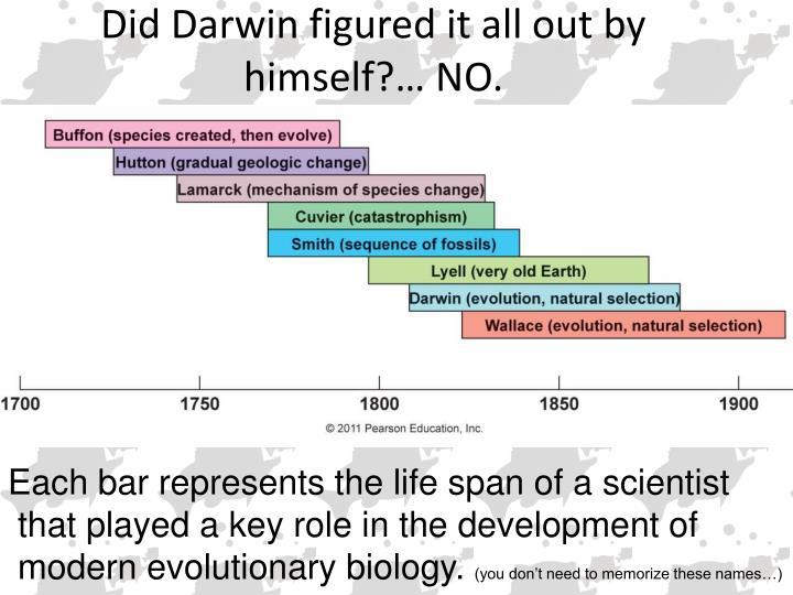 Key characteristics of life span development