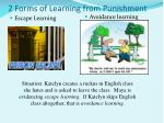 2 forms of learning from punishment