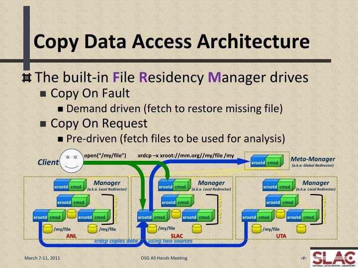 Copy Data Access Architecture