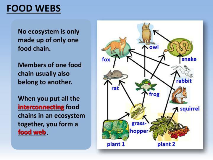 Ppt Food Powerpoint Presentation Id2423377