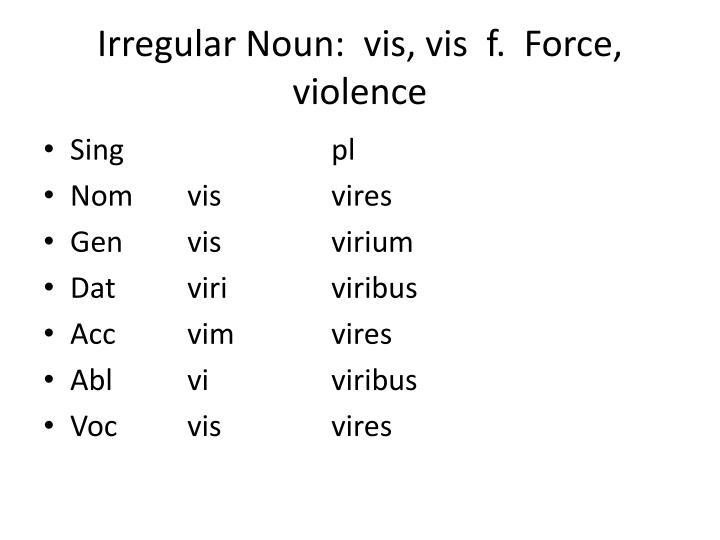 Irregular Noun: