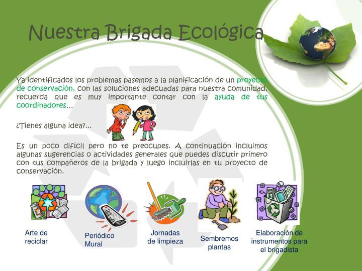 Nuestra Brigada Ecológica