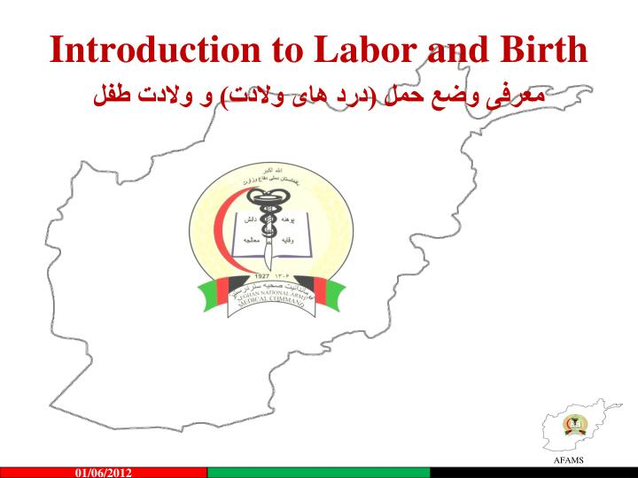 introduction to labor and birth n.