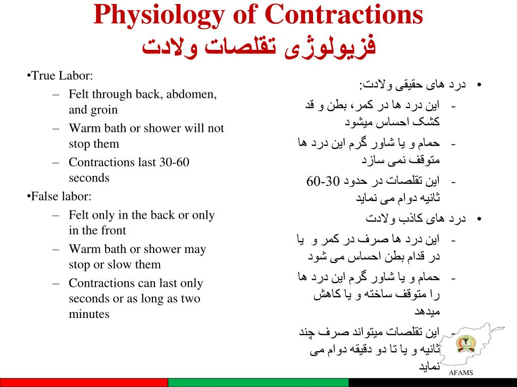 PPT - Introduction to Labor and Birth معرفی وضع حمل (درد های