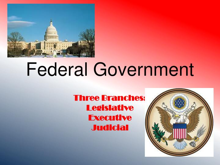 federal government n.