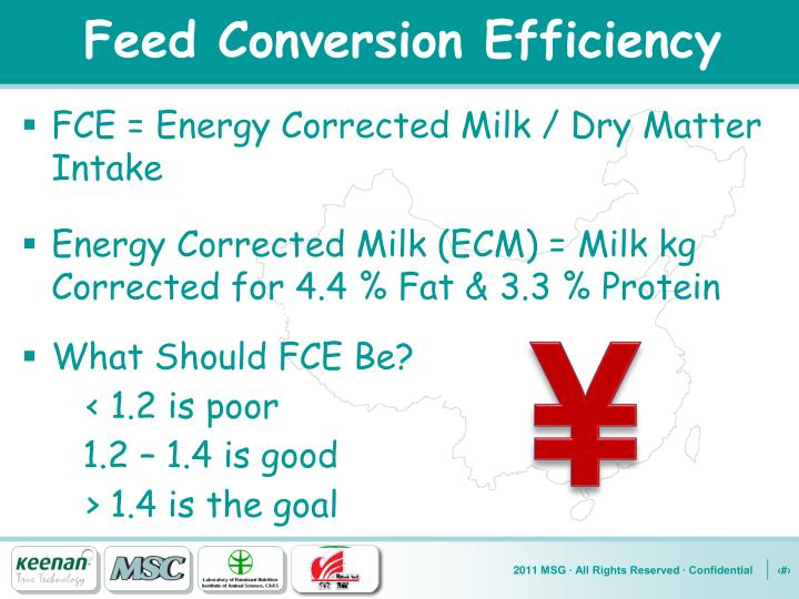 Feed conversion efficiency