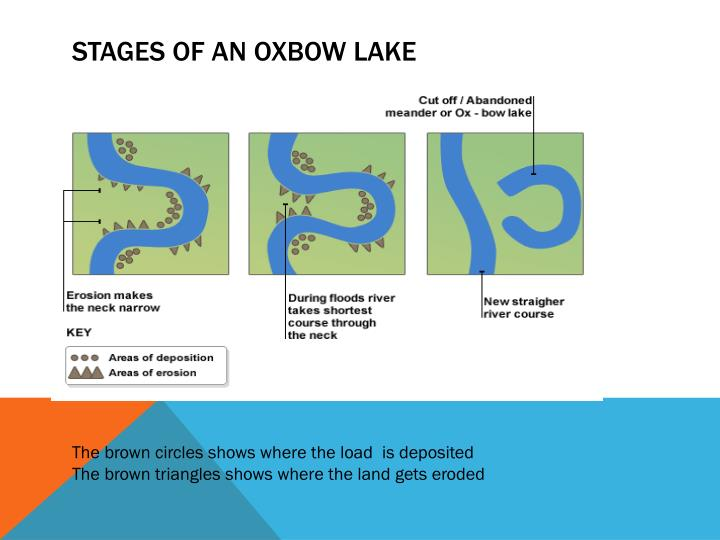 Stages of an oxbow lake