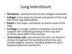 lung interstitium