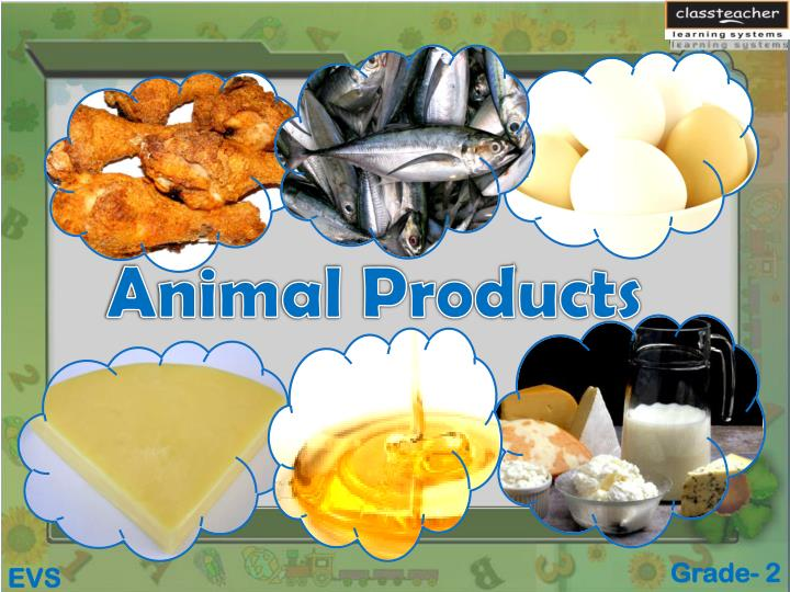 animal products n.