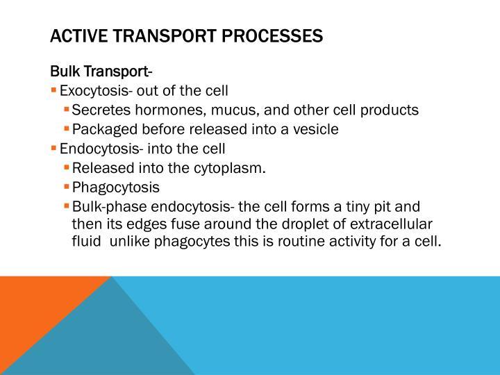 Active Transport Processes