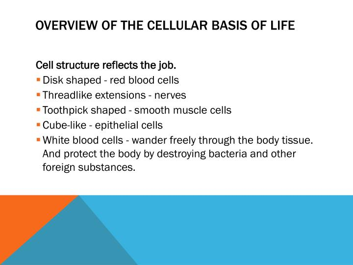 Overview of the cellular basis of life