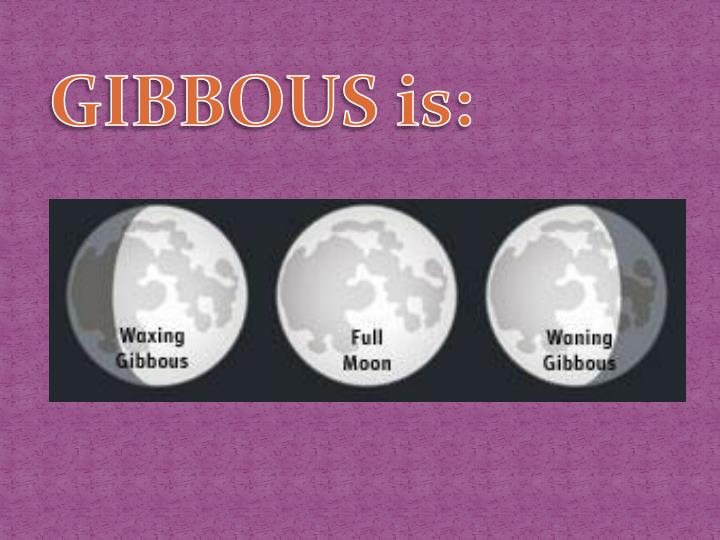 GIBBOUS is: