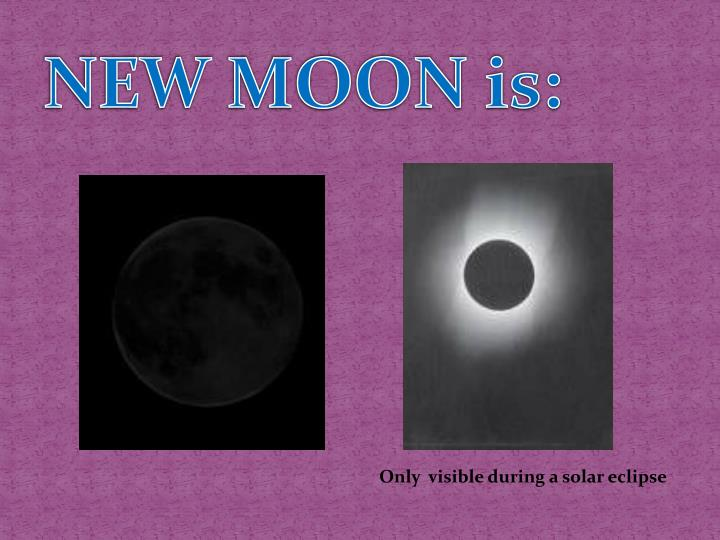 NEW MOON is: