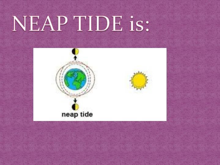 NEAP TIDE is: